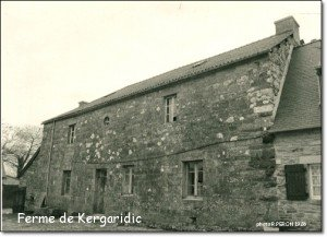 Kergaridic